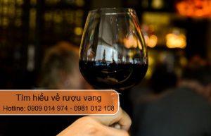 tìm hiểu về rượu vang