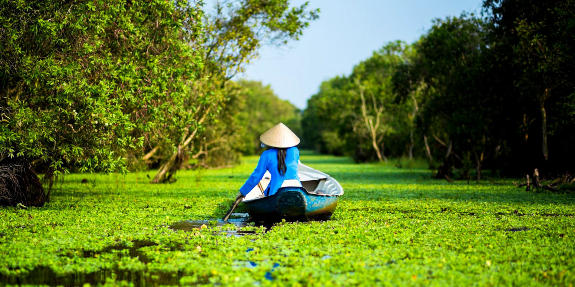 Ecotours in the mekong delta