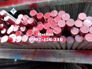 Láp inox 420 inox 430 inox 201 Phi 50mm