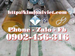Láp inox 316/316L Phi 50mm
