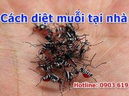 cách diệt muỗi tại nhà